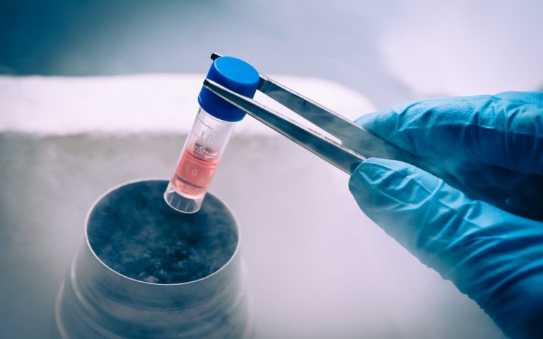 Canon BioMedical Develops Easier Way to Identify SMA-linked Gene Abnormalities